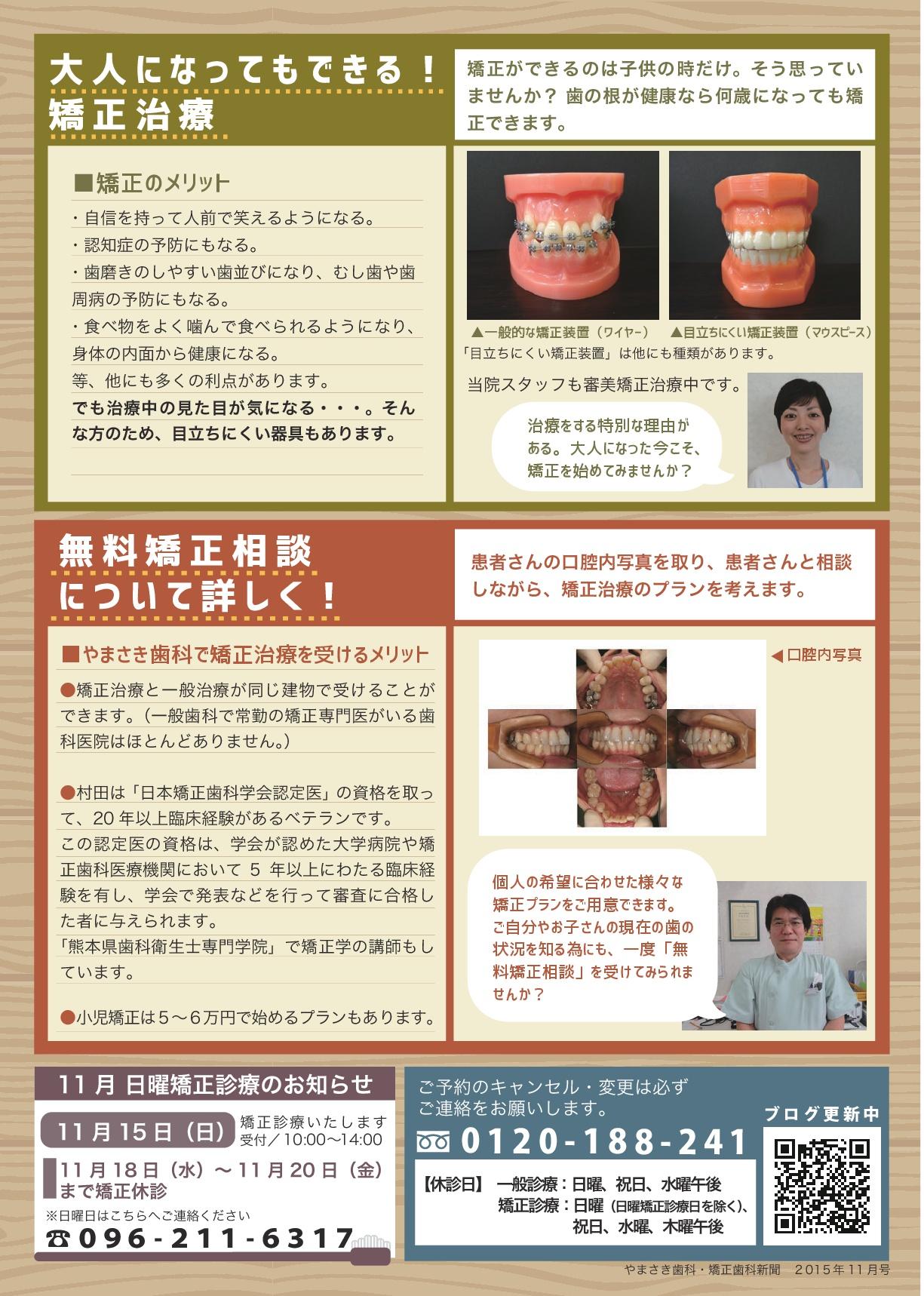 sinbun15-11-2-001