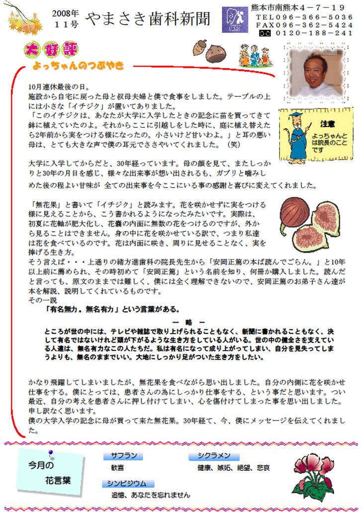 sinbun2008-11-1