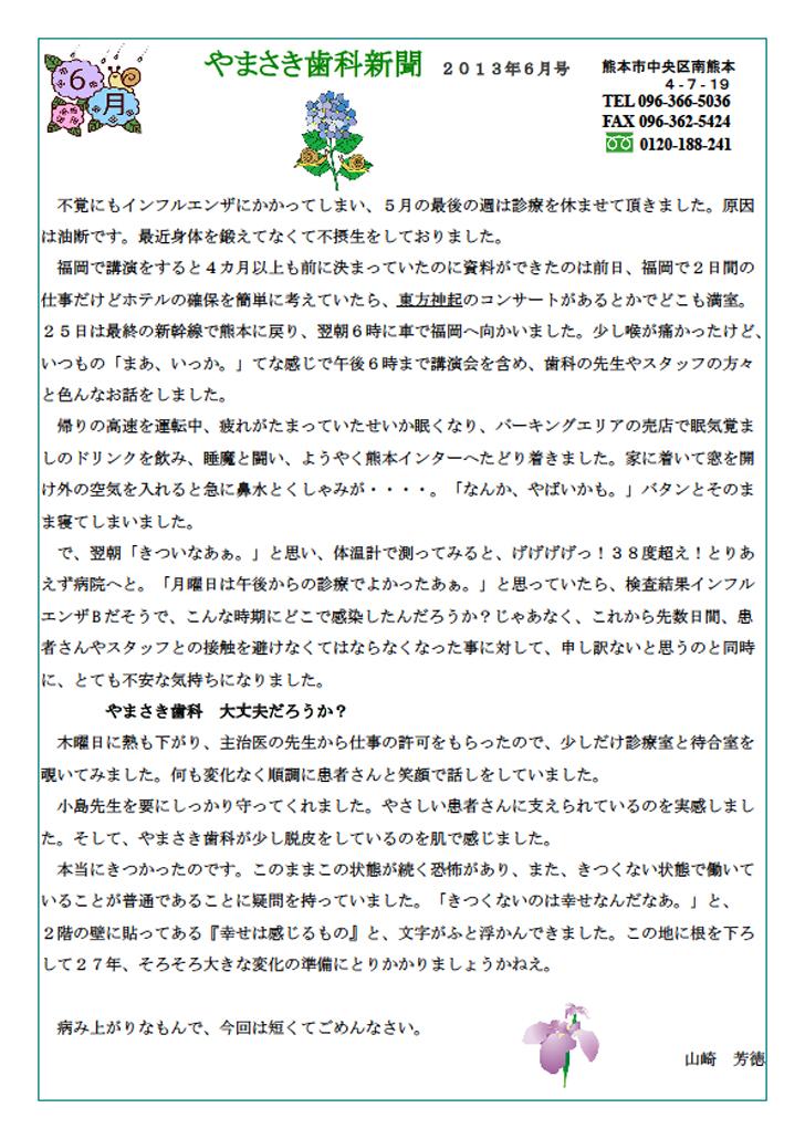 sinbun2013-6-1